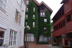 Norvegia_40