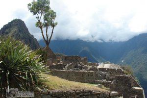 Peru_16d