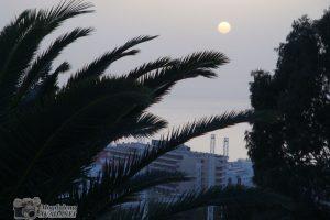Tenerife_25